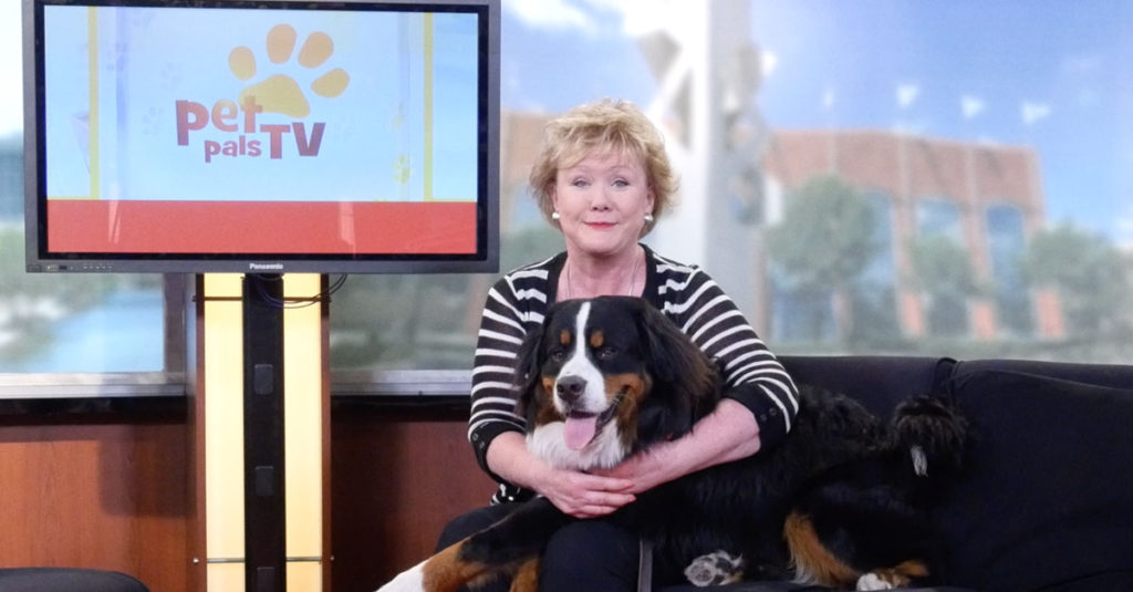 Indianapolis-produced TV programs Pet Pals and Boomer TV are experiencing a ratings boom.